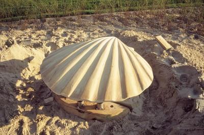 Shell_04